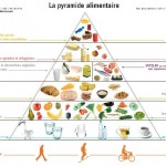 pyramide-alimentaire-belge